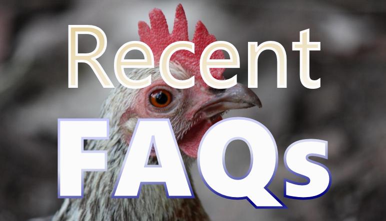 Recent FAQs